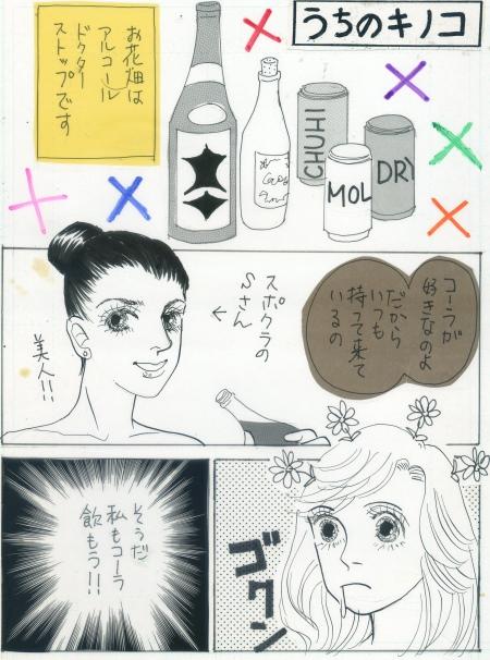きのこ専用フォルダ010.jpg