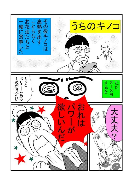 キノコ1.jpg
