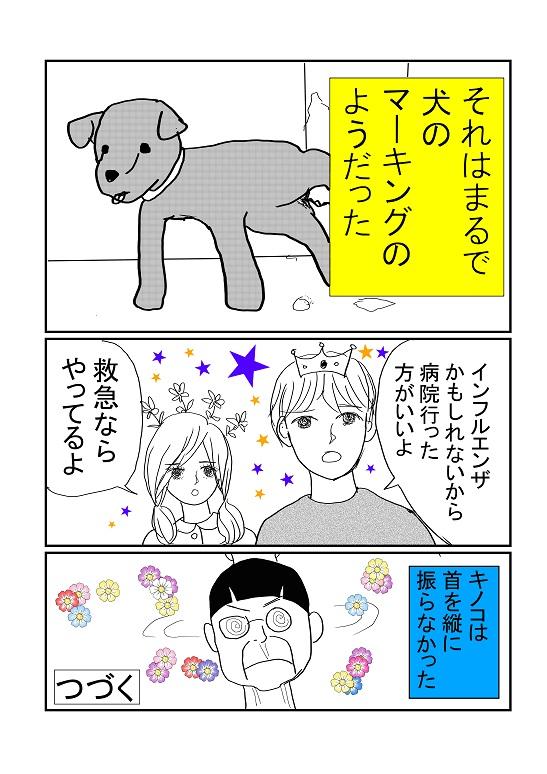 キノコ3.jpg