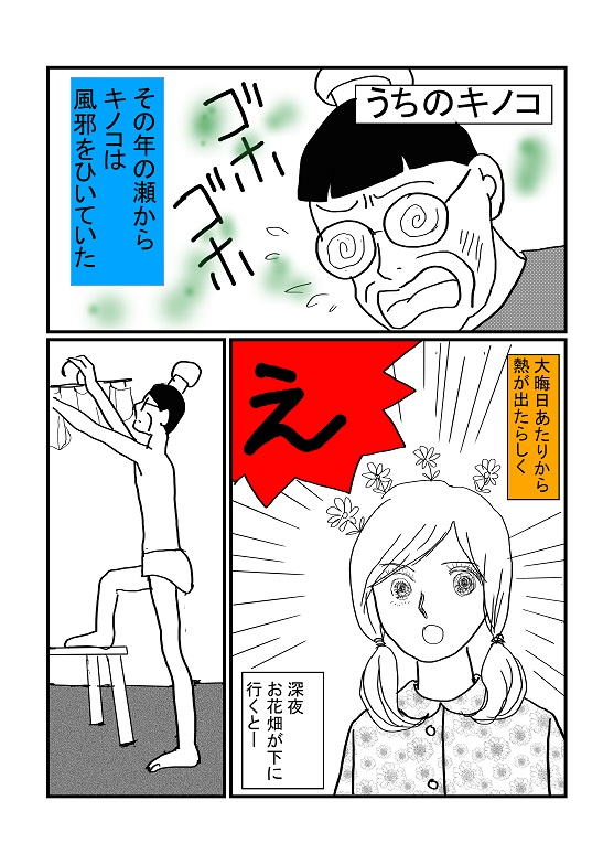 kキノコ1.jpg