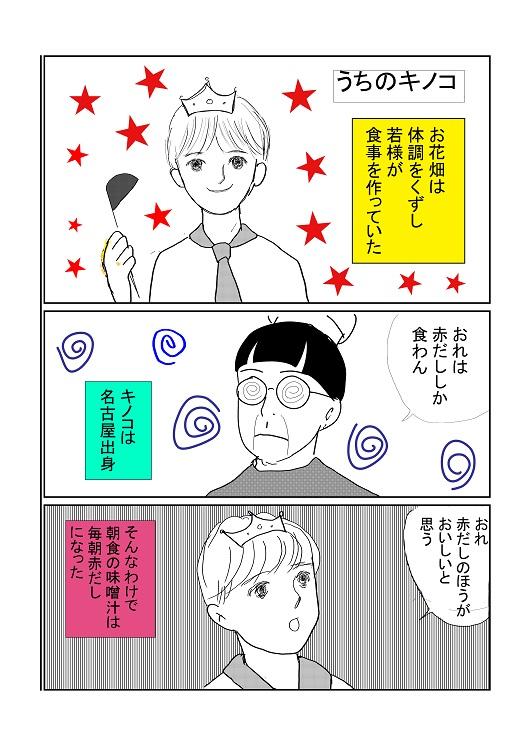 うちのキノコ1.jpg